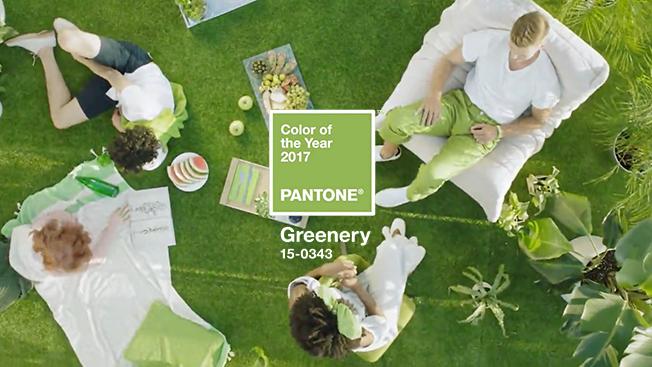 adoro-arquitetura_greenery_pantone_1
