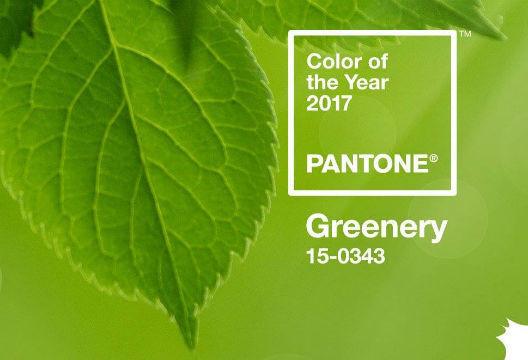 adoro-arquitetura_greenery_pantone